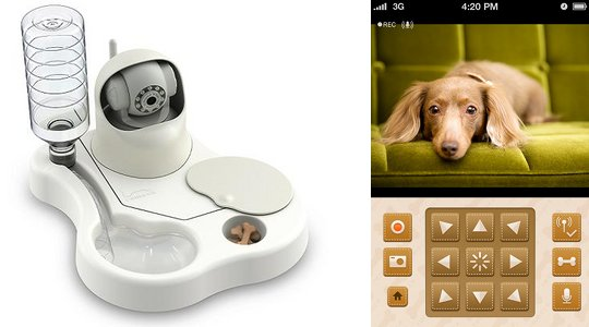 remoca-dog-food-bowl-camera
