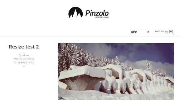 pinzolo-wordpress-theme