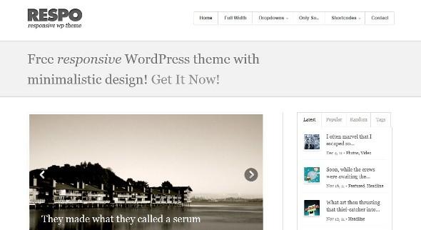 respo-wordpress-theme