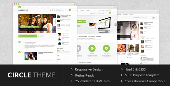 circle_wordpress_theme